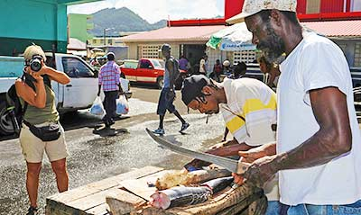 St Lucia Photo Tours - Castries Fish Market